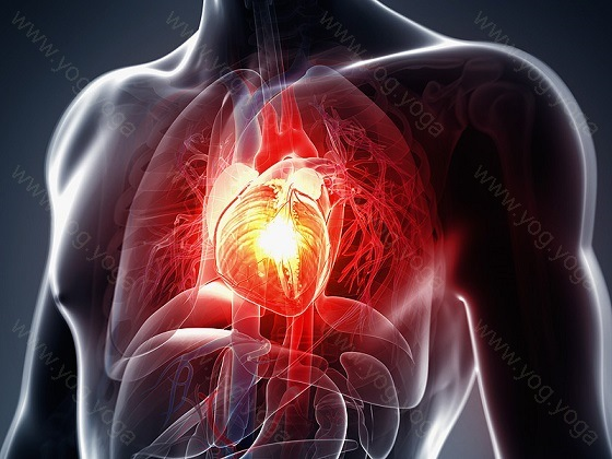 Heart Disease Cure and Treatment in Alwar  Rajasthan