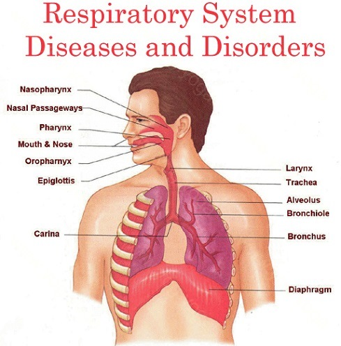 Respiratory Disease Cure and Treatment in Betul  Madhya Pradesh