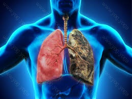 Respiratory Disease Cure and Treatment in Firozabad  Uttar Pradesh